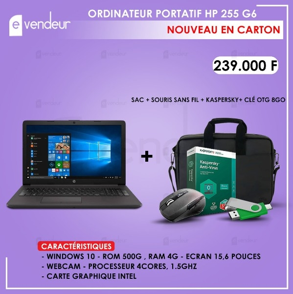 ORDINATEURS PORTATIF HP 255 G6